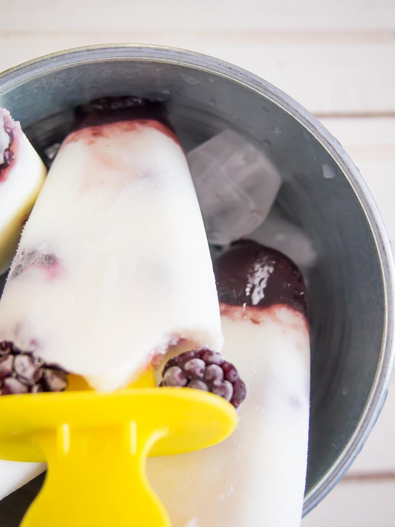Polos de yogur y mora