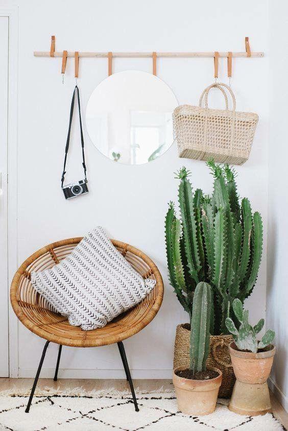 decorar-con-cactus